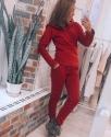 Спортивный костюм утеплённый с капюшоном-воротником Бордовый